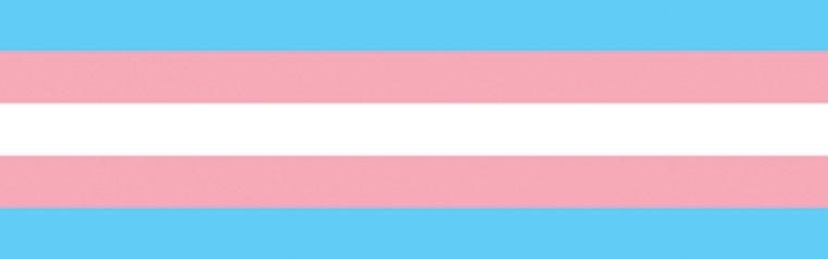 Zalecenia Polskiego Towarzystwa Seksuologicznego dotyczące opieki nad zdrowiem dorosłych osób transpłciowych – stanowisko panelu ekspertów